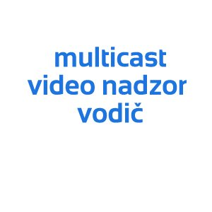 video nadzor multicast